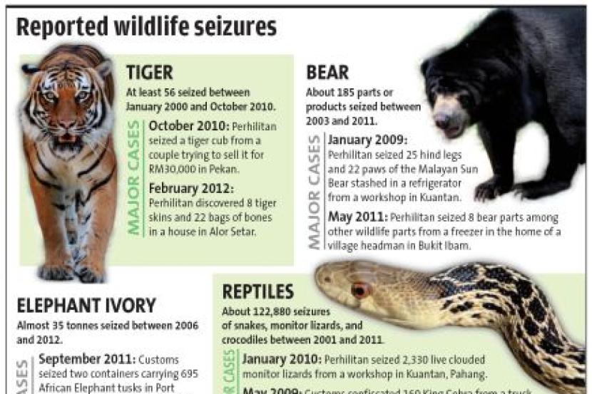 Perdagangan Hidupan Liar Ancam Haiwan Semasa Mstar